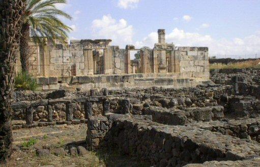 Capernaum Pictures