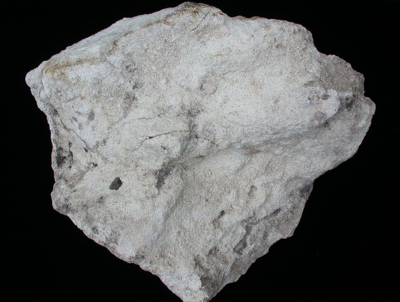 Limestone Oolitic A hand sample of oolite looksOolitic Limestone