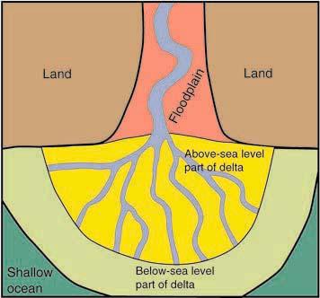 Delta on Lake Forming Diagram