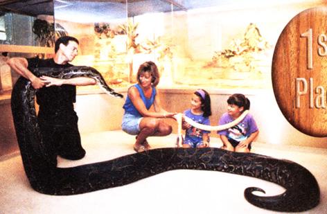 لأنواع كثيرة الثعابين كبيرة وصغيرة !!!! python.jpg